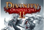 Divinity: Original Sin 2 - Divine Edition EU Steam GYG Gift