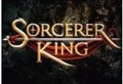 Sorcerer King Steam CD Key