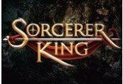 Sorcerer King EU Steam CD Key
