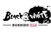 Black & White Bushido Steam CD Key