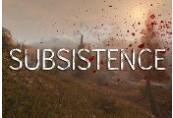 Subsistence Steam CD Key