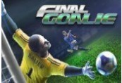 Final Goalie: Football Simulator Steam CD Key