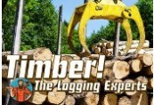 Timber! The Logging Experts Steam CD Key