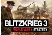 Blitzkrieg 3 Deluxe Edition PL/CZ/UKR/RU Languages Only Steam CD Key