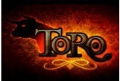 Toro Steam CD Key