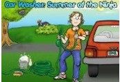 Car Washer: Summer of the Ninja Clé Steam