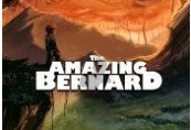 The Amazing Bernard Steam CD Key