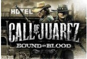 Call of Juarez: Bound in Blood Uplay CD Key
