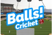 Balls! Virtual Reality Cricket Steam CD Key