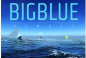 Big Blue - Memory Steam CD Key
