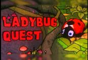 Ladybug Quest Steam CD Key