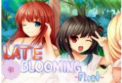 Osozaki 遅咲き Late Blooming - First Steam CD Key