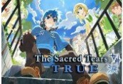 The Sacred Tears TRUE Steam CD Key