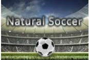 Natural Soccer Steam CD Key