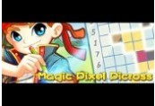 Magic Pixel Picross Steam CD Key