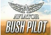 Aviator - Bush Pilot Steam CD Key