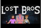 Lost Bros Steam CD Key