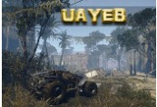 UAYEB Steam CD Key