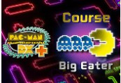 PAC-MAN Championship Edition DX+: Big Eater Course DLC Steam CD Key