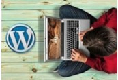 Wordpress Marketing: Beginner's Wordpress Blueprint ShopHacker.com Code