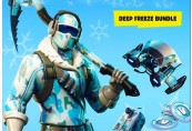 Fortnite Deep Freeze Bundle PS4 CD Key