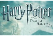 Harry Potter and the Deathly Hallows™ – Part 2 EA Origin CD Key