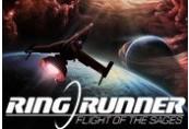 Ring Runner: Flight of the Sages | Steam Key | Kinguin Brasil
