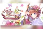 Atelier Rorona ~The Alchemist of Arland~ DX Steam CD Key