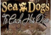 Sea Dogs: To Each His Own - The Final Lesson DLC Steam CD Key