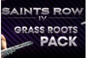 Saints Row IV - Grass Roots Pack DLC Steam CD Key