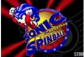 Sonic Spinball Steam Gift
