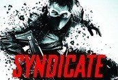 Syndicate Limited Edition Origin CD Key