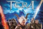 TERA Winterwing Starter Pack Activation CD Key