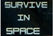 Survive in Space Steam CD Key