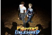 Fighters Unleashed Steam CD Key