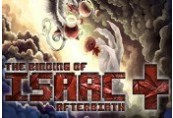 The Binding of Isaac - Afterbirth+  DLC Steam CD Key