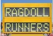 Ragdoll Runners Steam Gift