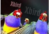 Xbird Steam CD Key