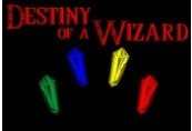 Destiny of a Wizard Steam CD Key
