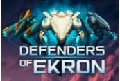 Defenders of Ekron Steam CD Key