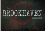 The Brookhaven Experiment Steam CD Key