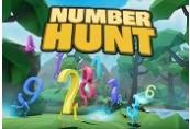 Number Hunt Steam CD Key