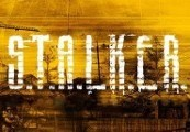S.T.A.L.K.E.R. Zone GOG CD Key