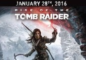 Rise of the Tomb Raider + The Sparrowhawk Pack RU VPN Required Steam CD Key