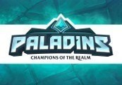 Paladins - Raider Skin for Pip Digital Download Key