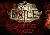 Path of Exile - Arctic Crown + Cobra Pet CD Key
