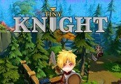 Tiny Knight Steam CD Key