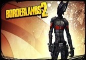 Borderlands 2: Assassin Domination Pack Steam Gift