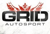 GRID Autosport RU VPN Required Steam Gift