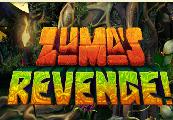 Zuma's Revenge! Steam Gift